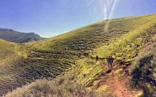 The Gran Canaria Walking Festival features some top trails