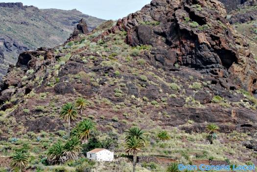 Country living in La Aldea de San Nicolás