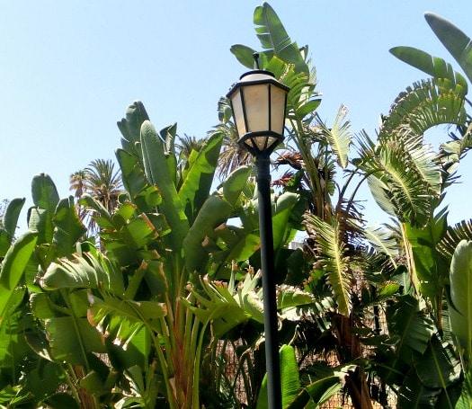 Ingenio's Parque Las Mimosas