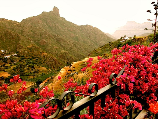 The garden o f Gran Canaria on your doorstep at Casita Nublo, Tejeda