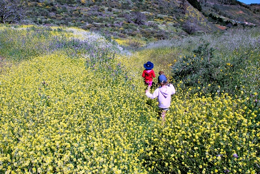 Walking in Gran Canaria's fun for all the family