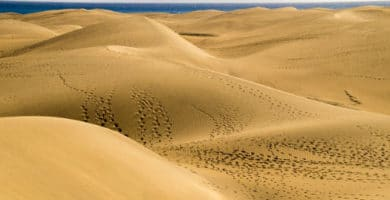 Maspalomas dunes under threat