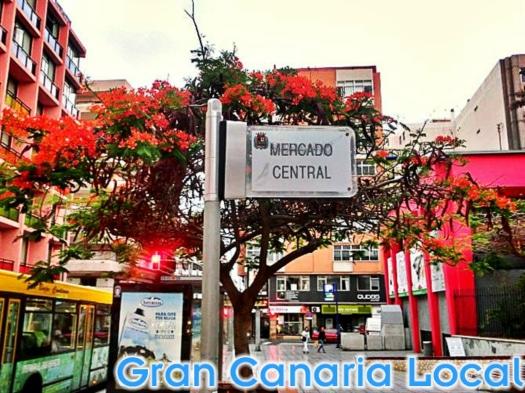 Alcaravaneras' Central Market