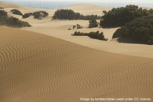 The Maspalomas dunes are one way you'll fall in love with Gran Canaria