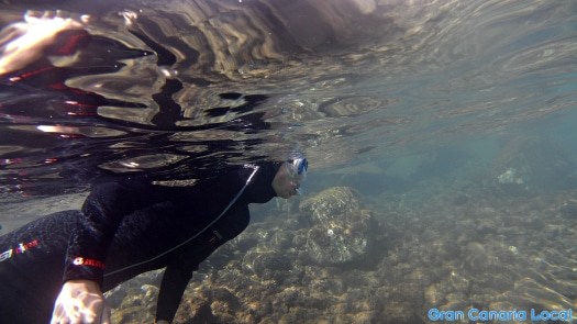 Snorkelling on Gran Canaria with Davy Jones Diving